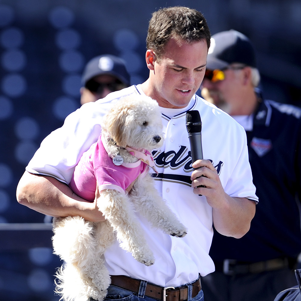 Clayton Richard and Bell (Poodle Mix)